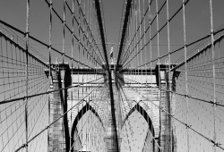 Brooklyn Bridge (2994)