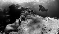 Sliema reef (DSD_4981)