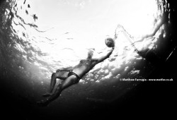 Water Polo (DSD5875)
