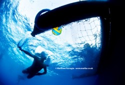 Water Polo (DSD5957)