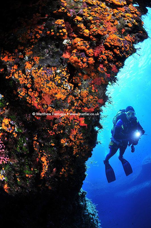 Dive Destination Nominated Image (DSF1273)